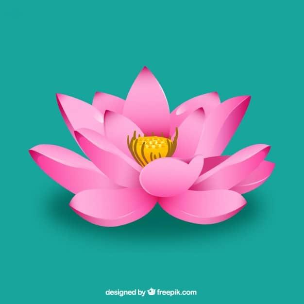 pink lotus flower 23 2147514466 - เลือกซองอั่งเปาอย่างไรให้เหมาะสมกับผู้รับ