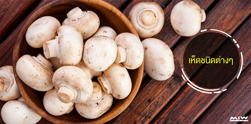 10 immunization foods 01 - 10 อาหารเสริมภูมิต้านทานช่วยกระตุ้นภูมิคุ้มกันของร่างกาย