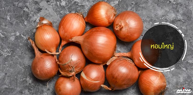 10 immunization foods 02 - 10 อาหารเสริมภูมิต้านทานช่วยกระตุ้นภูมิคุ้มกันของร่างกาย